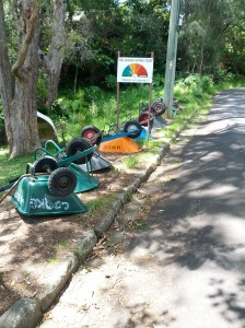 No cars on the island, so locals transport goods with these. Photo (c) Megan S, December 2013