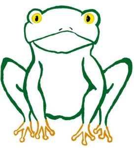Foggy Frog (c) Megan S, January 2014