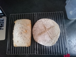 The finished products (should've cooked hotter to get a darker crust, more rise in the round loaf, and cooked right through)