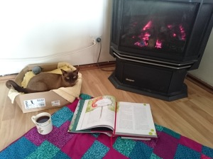 Set up for reading by the fire, with a nice cup of tea and Pepper (cat) for company.
